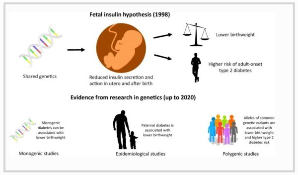 graphical abstract from Hughes